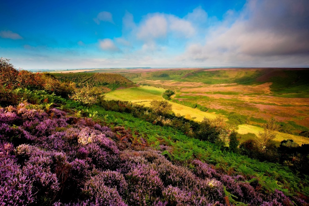 Photo Credit: Hole of Horcum, North York Moors National Park, England